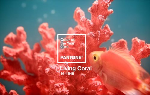 2019, the year of… Living Coral
